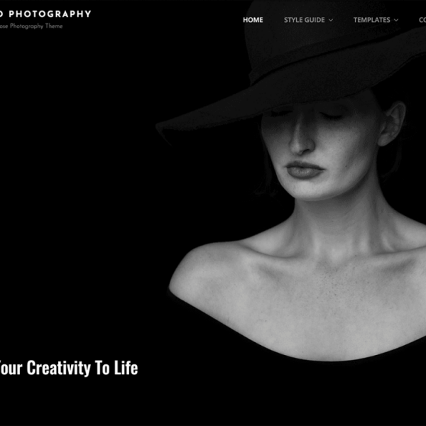 Bold Photography Theme